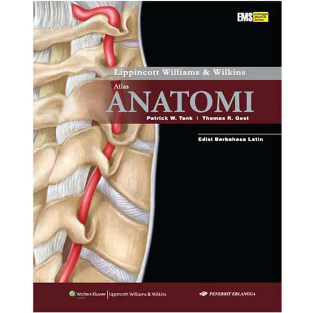 Erlangga Buku - Atlas Anatomi