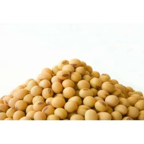 ... Info Harga Kuartet Nabati Kacang Koro Kupas 2 Kg Baru Temukan Source Kuartet Nabati Kacang Kedelai