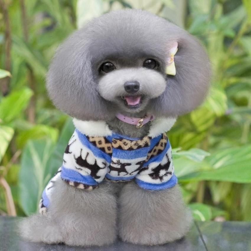 AC Baru Fashion Basic Anjing Hoodie Cute Hewan Peliharaan PUPPY Anjing Kucing SuppliesCloth-Intl