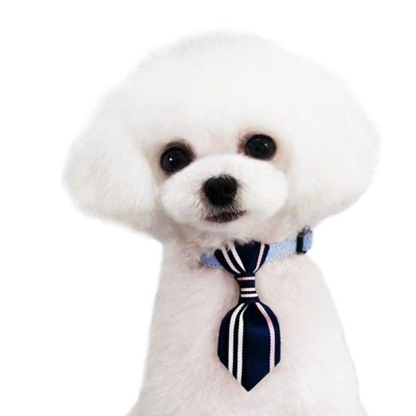 Peliharaan Dasi Modis Dapat Disesuaikan Kerah Garis Katun Peliharaan Dasi Anjing Dasi untuk Kucing-Internasional