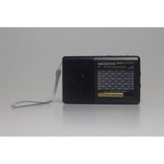 Detail Produk Klasik 9 BAND FM Radio Portabel Digital Stereo Mini Speaker MP3 Musik Player dengan TF SD Card USB AUX Line Input Sound Kotak (Hitam) -Intl
