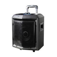 Speaker Portable Aubern PS-8CT