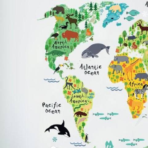 Hewan Dunia Peta Stiker Dinding Dekorasi Rumah Dekal Wallpaper Bisa Dicopot Pasang Sendiri-Internasional 3