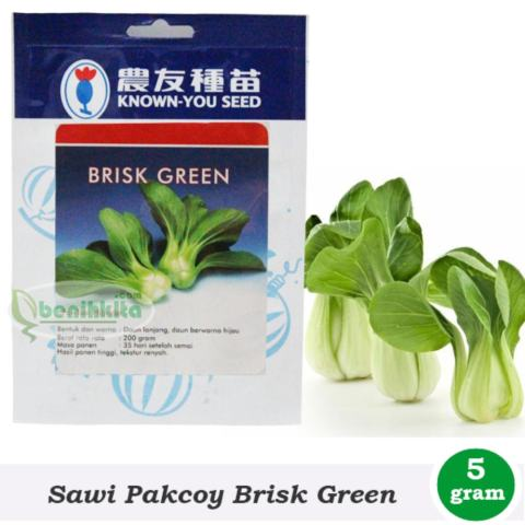 Benih - Bibit Sawi Pakcoy Brisk Green (Known You Seed)