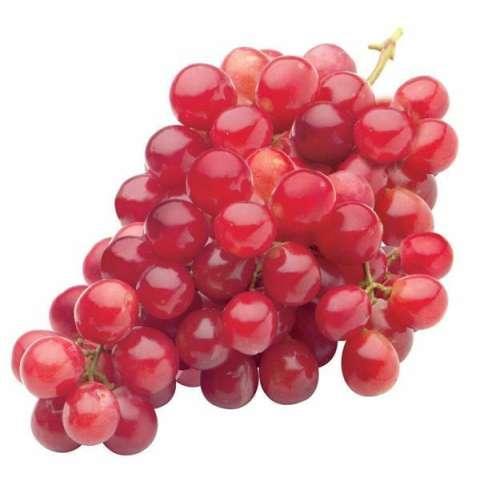 Home; berisi 5 biji benih buah anggur red globe
