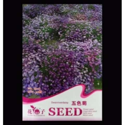 Amefurashi Bibit Benih Bunga Gerbera Daisy Flower Spec dan Daftar Source · Bibit Bunga Benih Swan River Daisy 30 Biji Retail Asia