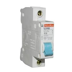 EELIC MCB-C2 MCB Miniatur Circuit Breaker 2 Ampere Maksimal 450 Watt