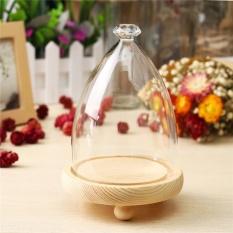 Glass Display Kayu Dasar Cloche Toples Kaca Berbentuk Bel Dome Bunga Immortal Pelestarian Vase-Intl
