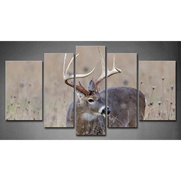 GPL/5 Panel Wall Art Whitetail Deer Buck Di Yang Berkabut Lapangan Lukisan Gambar Cetak Pada Hewan Kanvas Gambar untuk Dekorasi Rumah Dekorasi Potongan Hadiah/kapal dari AMERIKA SERIKAT-Intl