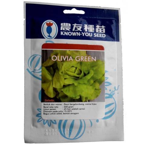 Known You Seed Olivia Green - Benih Selada Jumbo -10 gram