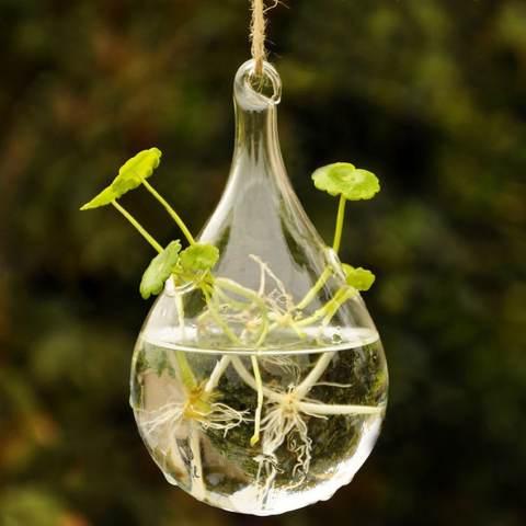 RIS Bening Water DROP Dinding Kaca Vas Gantung Botol untuk Hiasan Bunga Tanaman 2