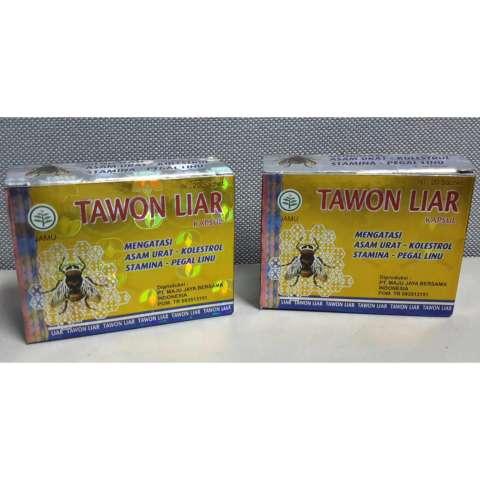... Tawon Liar 2Box Kapsul Obat Asam Urat Kolesterol Pegal Linu Stamina Legal BPOM