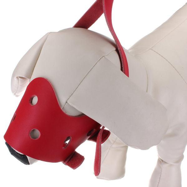 Disesuaikan Kulit Anjing Moncong PET Disesuaikan Anjing Moncong Mencegah Gigitan Mulut Masker Merah-Intl