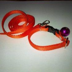 Collar/Kalung uk S + Leash Orange untuk Kucing, Kelinci, Musang, Puppy Small breed