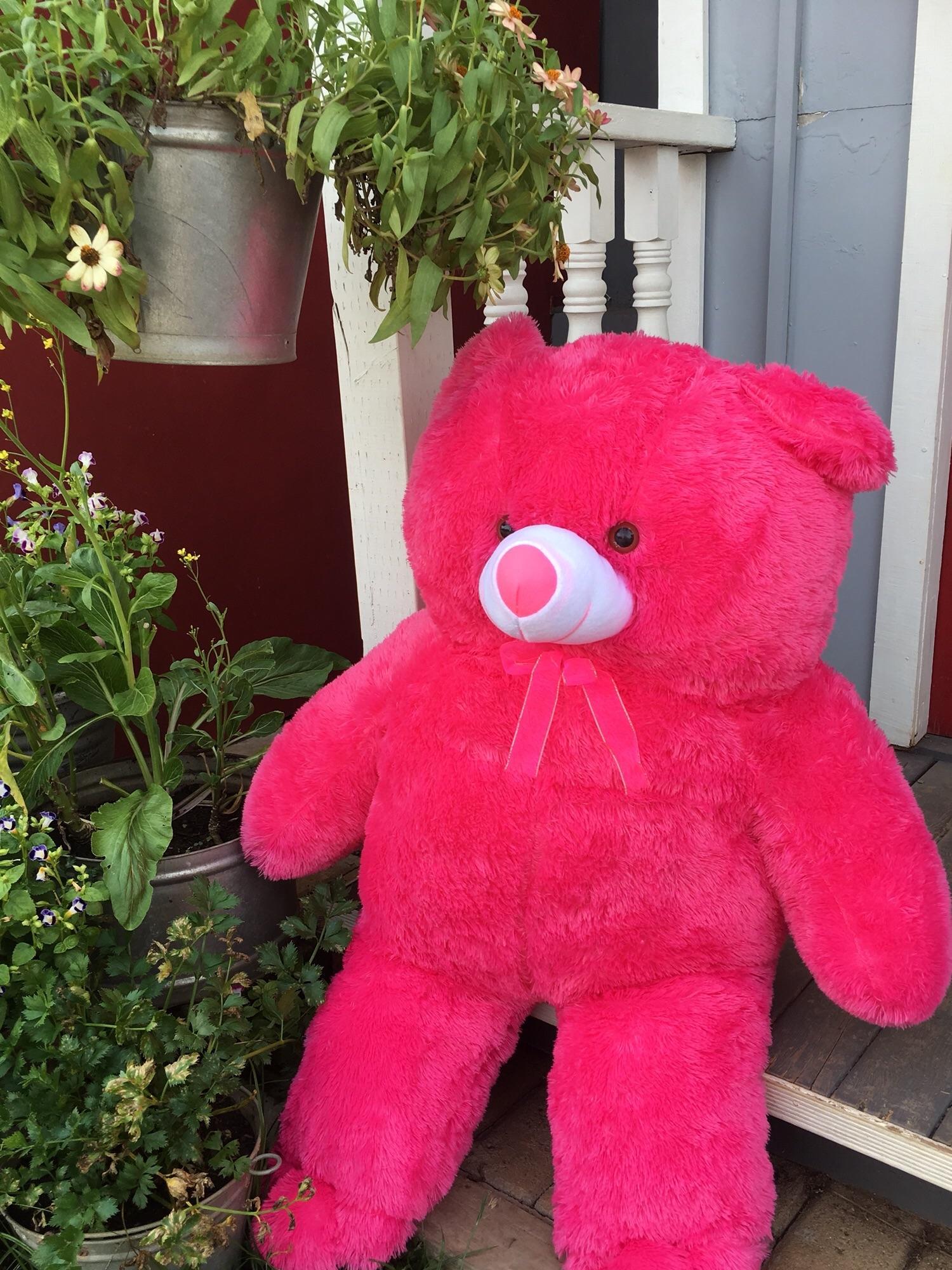 Boneka Beruang Teddy Bear Giant 1 Meter