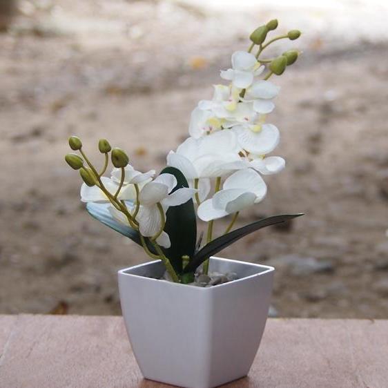 Vio ID - Bunga Artificial - Bunga Hiasan Meja Dan Rumah Kantor - Bunga  Anggrek Pot 90643fc42a