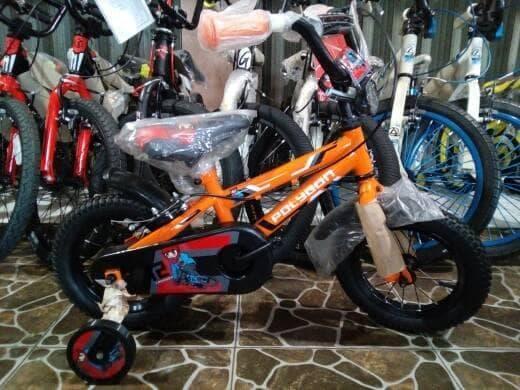 Sepeda Anak BMX 12