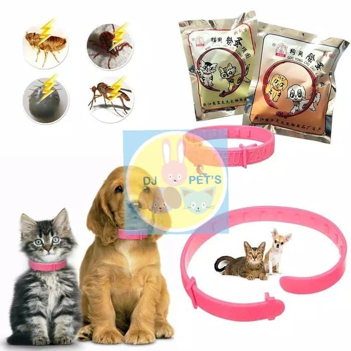 Kalung anjing dan kalung kucing anti kutu PET4090