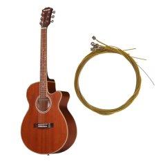 28-30lbsbonus: Senar Gitar Akustik