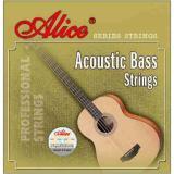 Spesifikasi Alice Senar Bass Akustik A618L Online