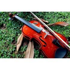 Biola 4/4 Violin Orchestra Orkestra Akustik Ukuran Dewasa Brown Solid Mahogany Kayu Wood Coklat