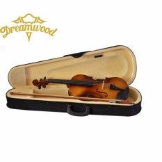 Biola / violin brown 4/4 better quality