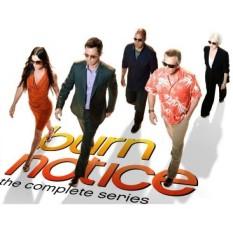 Burn Notice: The Complete Series - intl