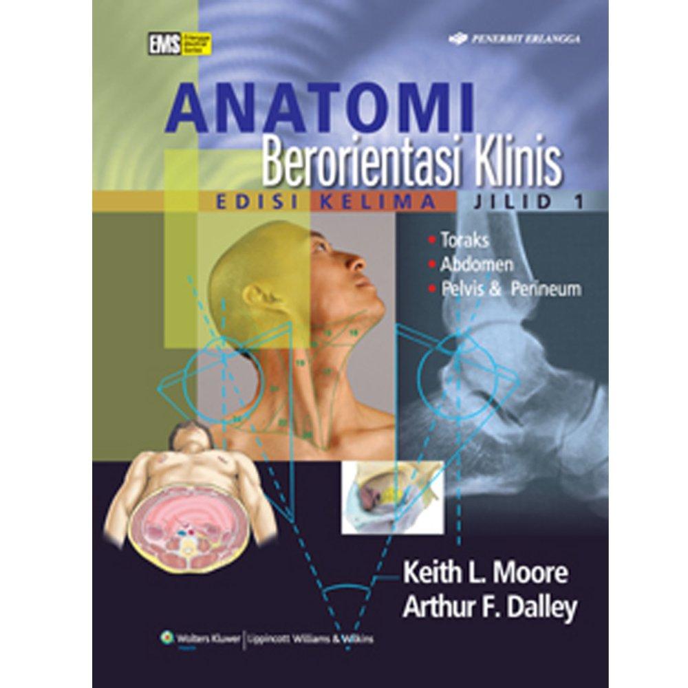 Erlangga Buku - Anatomi Berorientasi  Klinis Ed 5 Jl 1 : Keith L. Moore