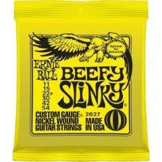 Beli Ernie Ball Senar Gitar Beefy Slinky 2627 Pake Kartu Kredit