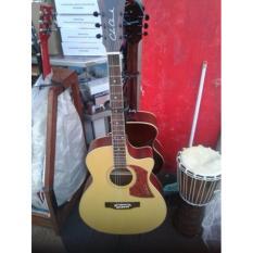 Cuci Gudang Gitar Akustik Cole Clark Top Spruce