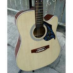 Gitar Akustik Pemula Jumbo Sungkai Yamaha F1000 Free Tas