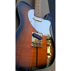 Jual Beli Gitar Fender Telecaster Lokal Brown Gold Baru Indonesia