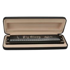 Kualitas Tinggi 24 Lubang Tremolo Harmonika Mulut Ogan Musik 24 Harpa dengan Gift Case Agate Instruments Baru-Internasional