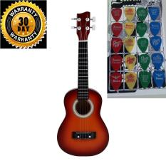 Ukulele Dark Brown Color