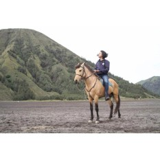 CNT Travel Bromo Midnight for 4 Pax