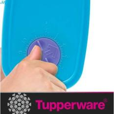 BEST PROMO TUPPERWARE MINI FREEZERMATE TEMPAT MAKANAN DI KULKAS 6 PCS