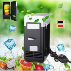 Car Kit Mini Can Drink Fridge Beverage Cooler Warmer Refrigerator Freezer HS609