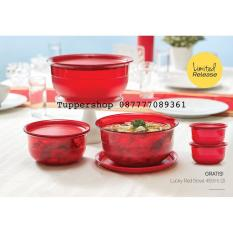 Beli Lucky Red Bowl Tupperware Table Collection Merah Ongkir 2Kg Di Indonesia