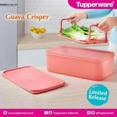 Tupperware Guava Crisper - Mencuci Meniriskan Dan Menyimpan Sayuran Di Kulkas - Pink Guava