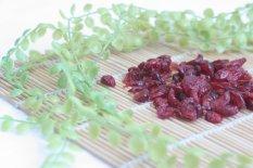 Harga Genki Plant Cranberry Dried 1Kg Murah