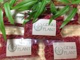 Jual Genki Plant Gojiberry 250G Dki Jakarta Murah