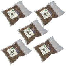 Grajell Premium Grass Jelly Cincau Hitam Mesona Chinensis – 5 Pcs