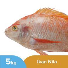 Ikan Nila Utuh Segar Kemasan 5kg