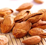 Jual Premium Roasted Almond In Shell 500Gr Termurah