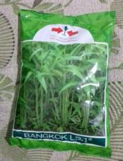 SPESIAL 1 Kg Benih Kangkung Bangkok LP-1 Cap Panah Merah- Original P