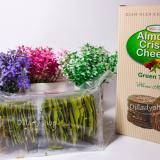 Beli Wisata Rasa Almond Crispy Green Tea Cheese 150 Gr Kredit