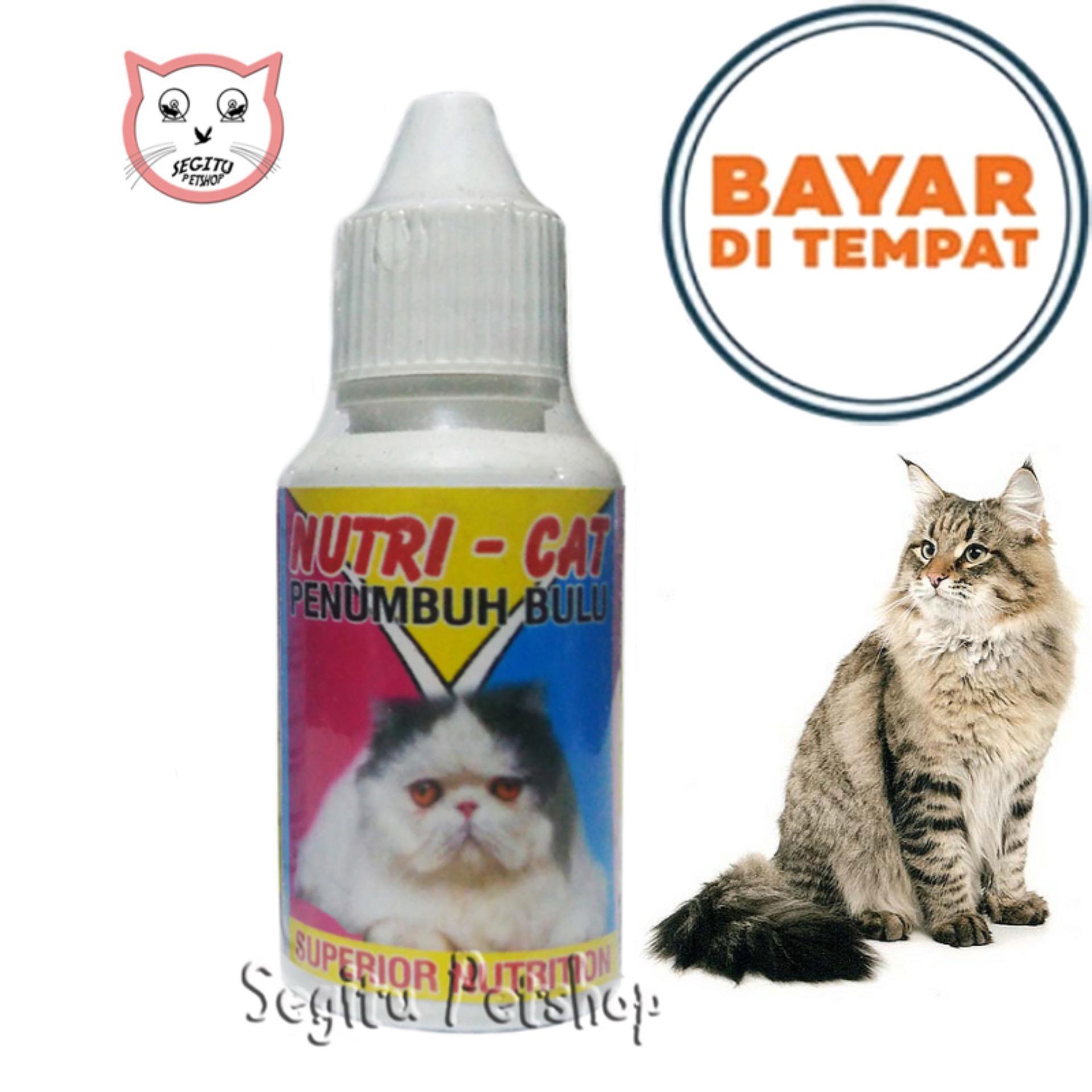 Vitamin Bulu Kucing Obat Penumbuh Bulu Kucing Rontok Nutri Cat By Segitu Petshop Bekasi.