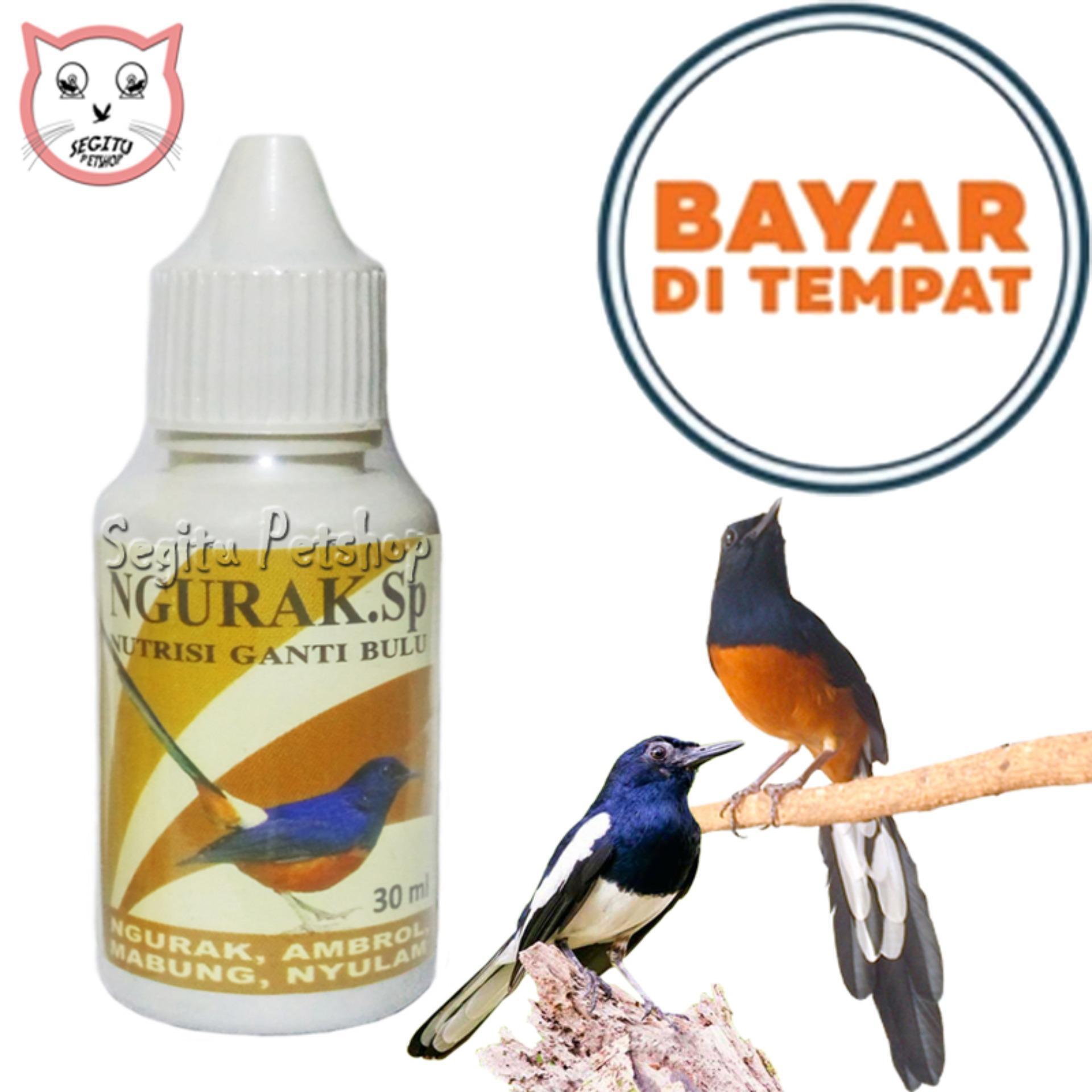 Obat Vitamin Burung Kicau Mabung Ngurak Lazada Indonesia