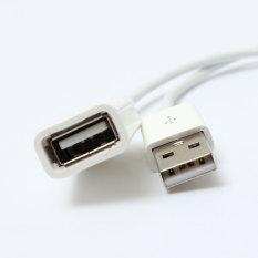 1 m/3 kaki USB 2.0 A-A untuk pria wanita tali kabel ekstensi Extender untuk