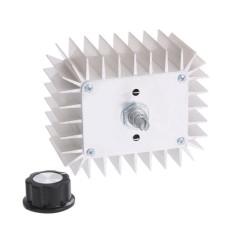 AC 220 V 5,000 W SCR Tegangan Regulator Speed Suhu ControllerDimmer-Intl